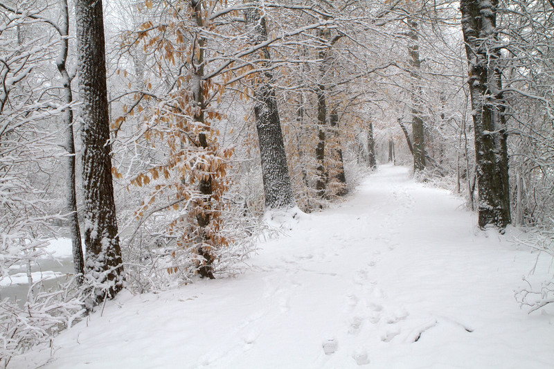 Smithville Snow Trails-95.jpg