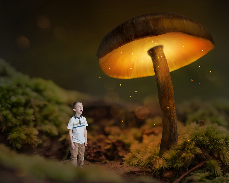 Jack_GiantMagicMushroomDigitalBackdrop_updated.jpg