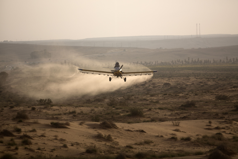 . A light plane sprays pesticides at a hill as it fights a swarm of locusts on March 6, 2013 in the Israeli village of Kmehin in the Negev Desert near the Egyptian border.  According the UN Food and Agriculture Organization (FAO) a swarm of tens of millions of locusts has overtaken Egyptian desert land in the past few days and is heading to the Gaza Strip, Israel and Jordan.  MENAHEM KAHANA/AFP/Getty Images