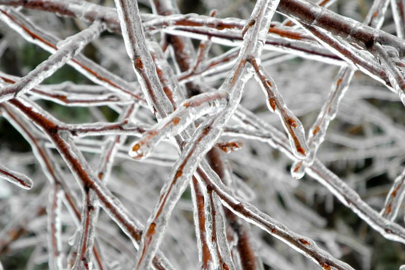 IceStorm-145.jpg