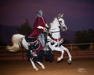 Arabian Horse Shows