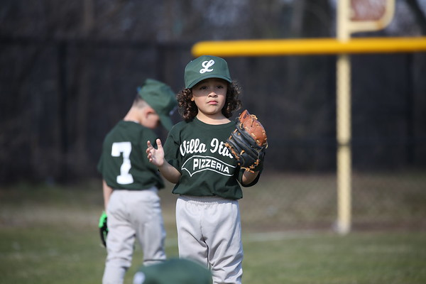 Lyndhurst Little League 2019