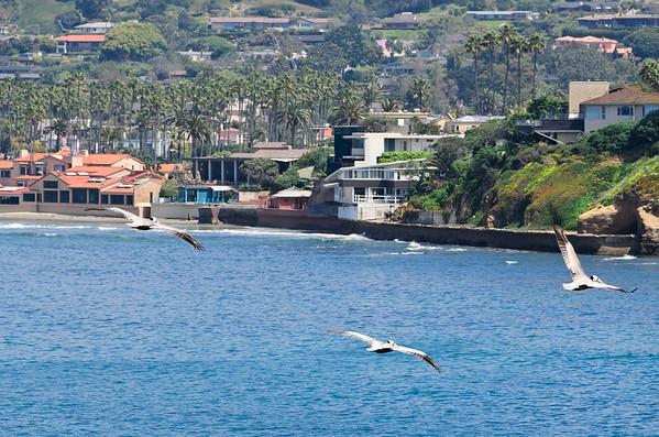 NAHAD 2011 - San Diego