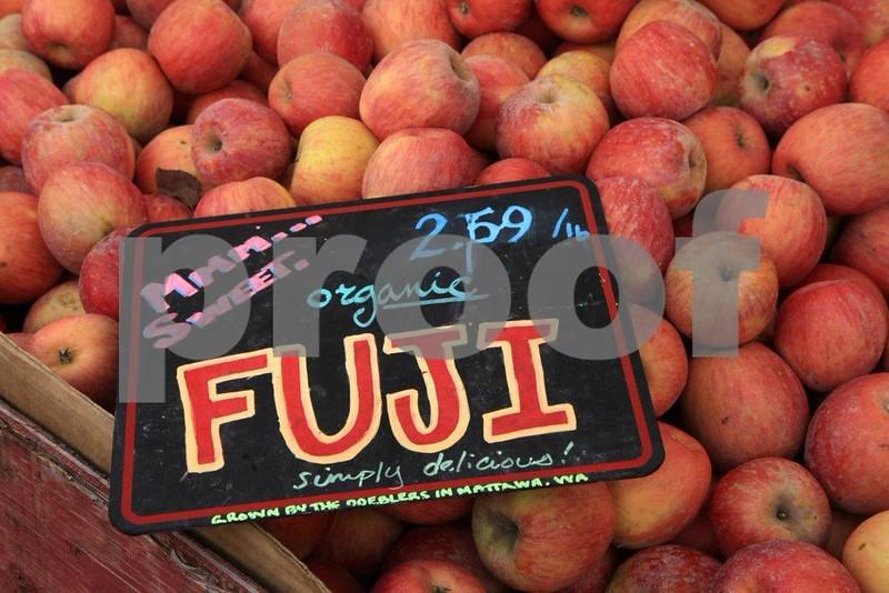 Organic Fuji apples  4 sale 5902.jpg
