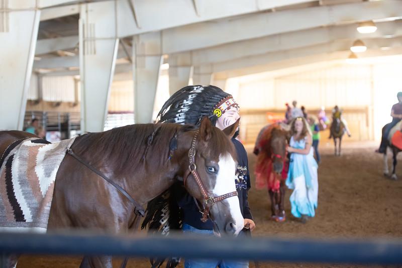 HorseCostume-2.jpg