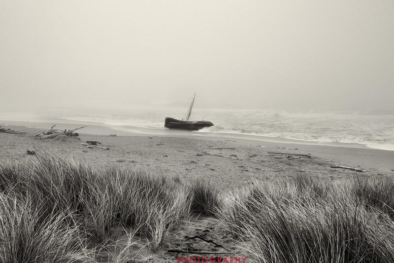 Salmon Creek Shipwreck  #14