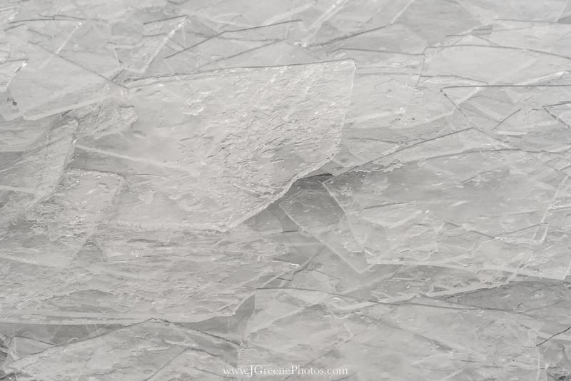 PresqueIsleEagles-6.jpg