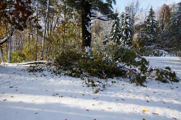 Oct 29 Snowstorm