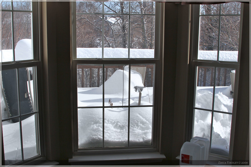 This is what my deck looks like from the inside.  The snow is up over the windows!