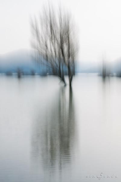 Haiku primordial IV. Verso blanco, verso negro, verso azul