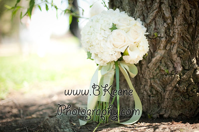 Portraits and Bridal party