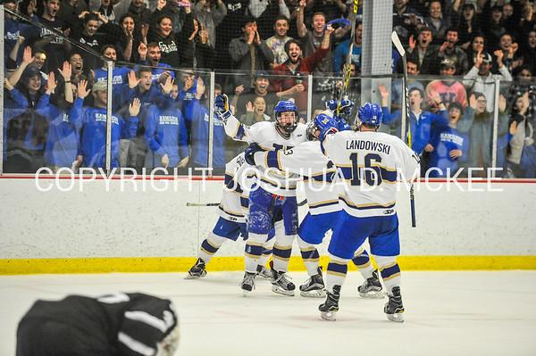 Men's Hockey NESCAC QTRS Hamilton v Bowdoin 2-25-17