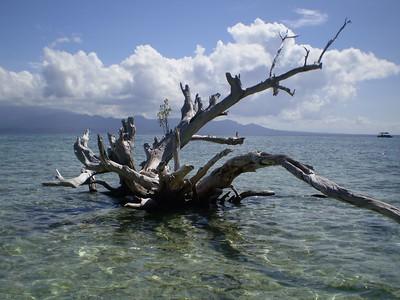 Melanesia: Fiji to Papua New Guinea