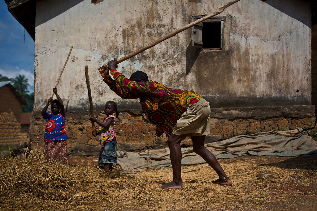 . In this photo taken Saturday Nov. 22, 2014, villagers thresh rice in the Guinean village of Meliandou, some 400 miles (600 kms) south-east of Conakry, Guinea, believed to be Ebola\'s ground zero. In Meliandou, as in many other villages across Ebola country, the disease is shrouded in mystery, surrounded by suspicion and rumors. People here still believe that Ebola was disseminated by white people seeking the deaths of blacks, including through a measles vaccination campaign; by a laboratory testing bats to create a vaccination against the virus; by politicians from a rival tribe bent on killing off the forest people; by white miners looking to exploit a nearby mountain of iron ore. (AP Photo/Jerome Delay)
