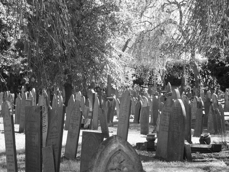 Many headstones