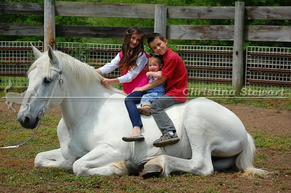 2014 Farm & Photo Sessions