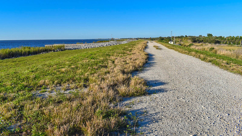 Florida Trail near Port Mayaca