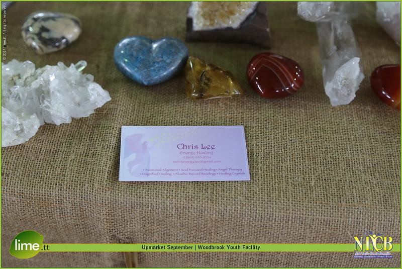 Chris Lee Energy Healing
