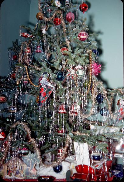 christmas tree closeup.jpg