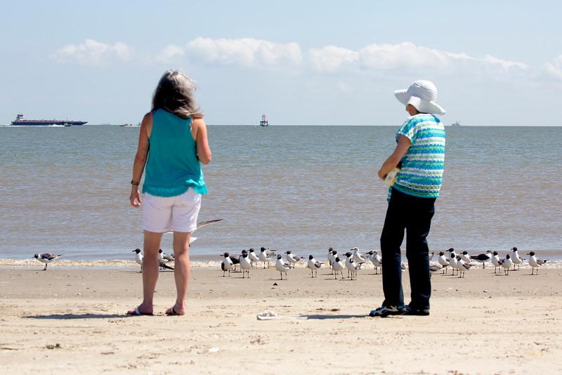 Sara and Carol feeding the birds and watching the ships.