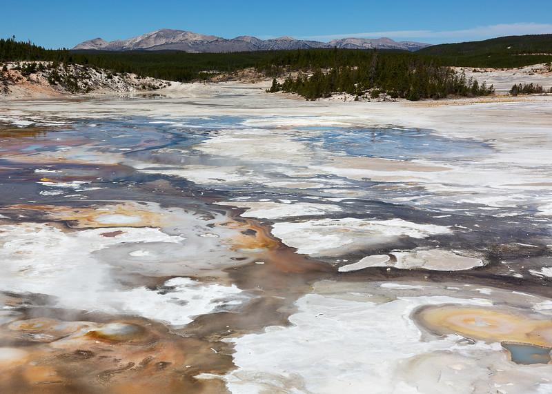 Norris Geyser Basin, Yellowstone National Park, USA
