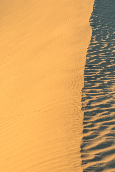 Looking along the edge of a sand dune with full light on one side and shadow on the other.