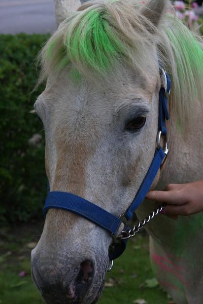 Pony Party--8th birthday