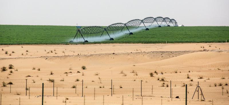 Abu Dhabi-1108.jpg