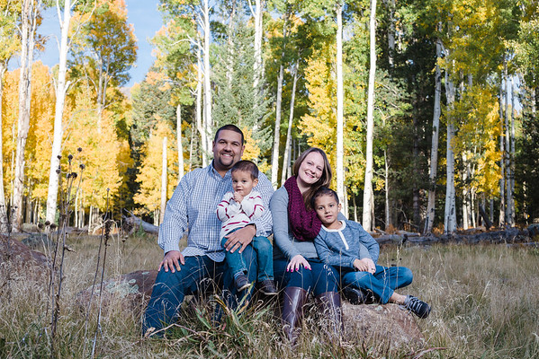Montanez Family | Aspen Corner | Flagstaff Family Photography