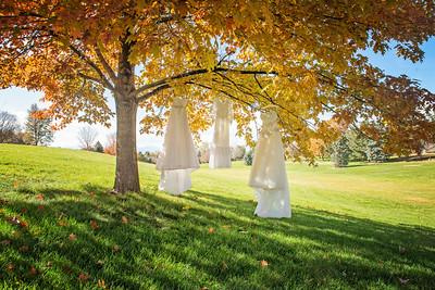 Wedding Dress Portraits