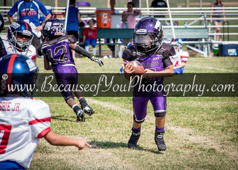 FR-Wildcats Purple