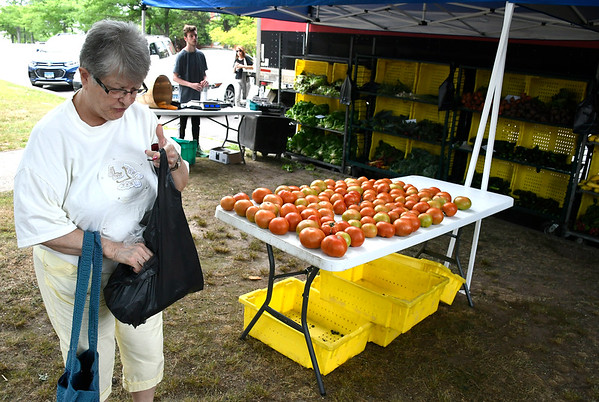 7/11/2018 Mike Orazzi | Staff Murielle Lamontagne while shopping during the Bristol Farmers Market on the Federal Hill Green Wednesday afternoon.