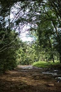 Banita Creek  (24)