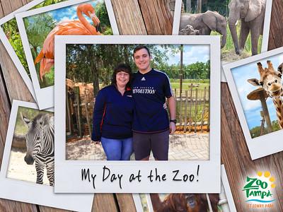 Zoo Tampa - Dec 27 2018
