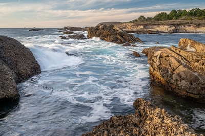 2020.11.21 - Point Lobos