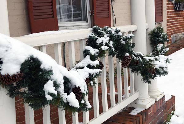 January 2019 Snow