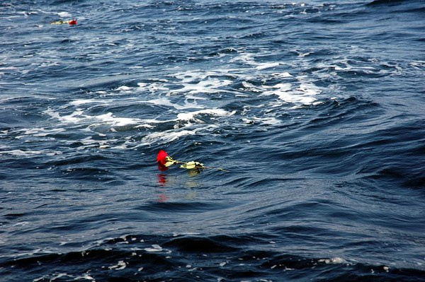 2005/07/31 - Dad's Ashes at Sea