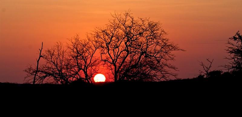 Sunrise , Namunyak Conservancy