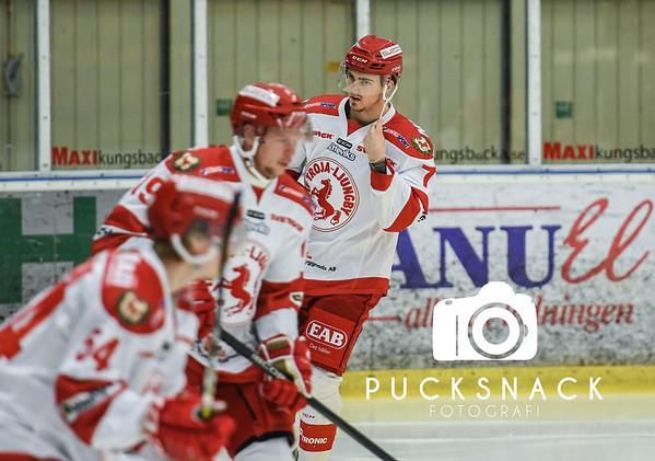 Hockeyettan - Allettan 2019-01-13: Hanhals IF - IF Troja/Ljungby