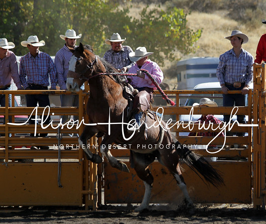 Stock Saddle Bronc ~ Saturday