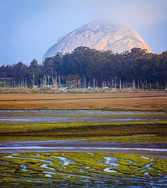 Morro Rock Marsh Estuary.jpg