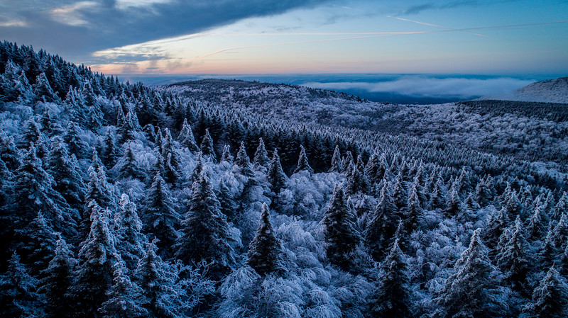 2020-02-01_SN_KS_Frosty Trees Aerial--3.jpg