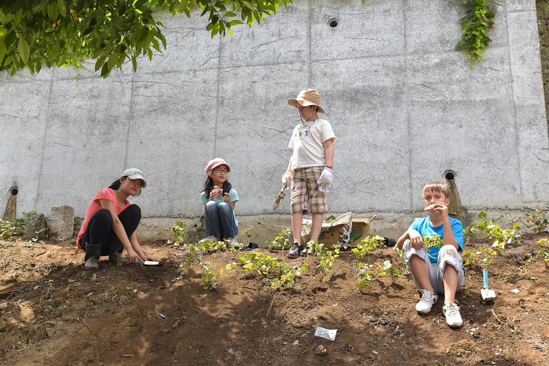 ICJC Garden Project-5366.jpg