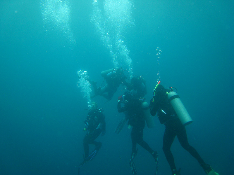 Diving in the Galapagos (391 of 392)