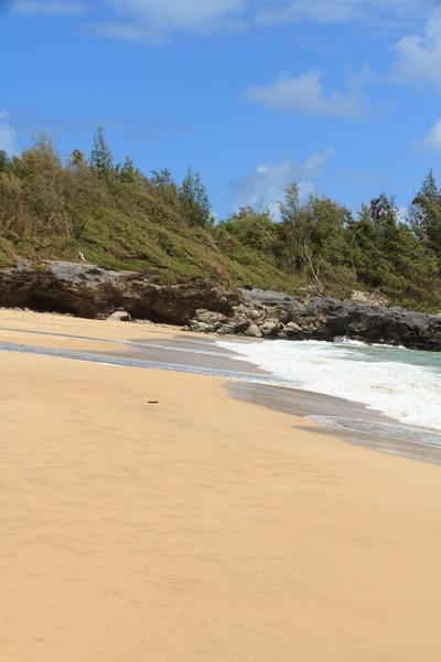 2012_06_02 DT Fleming Beach Park 084.jpg