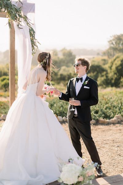 Andi & Seandon Sneak (4hour quarantine Wedding)