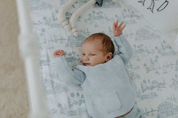 Teddy // Nursery Session