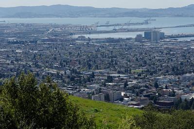 2012_03_04_Botanic_Garden_Berkeley