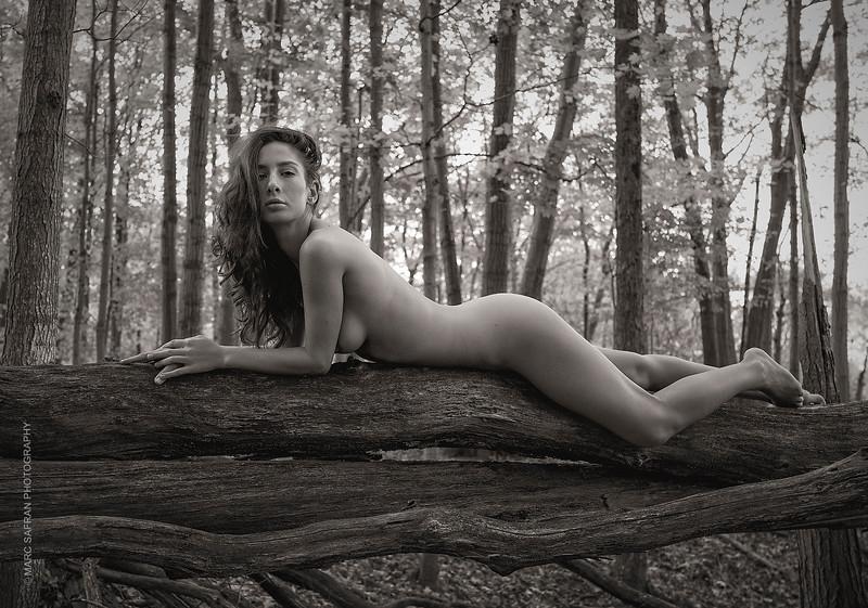 Sarah Varacalli