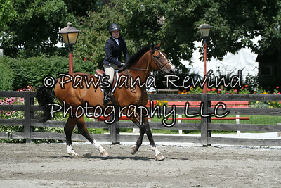 Ring II:  Children's Hunter Horse